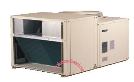 Máy lạnh đặt mái Rooftop dành cho nhà hàng, nhà xưởng