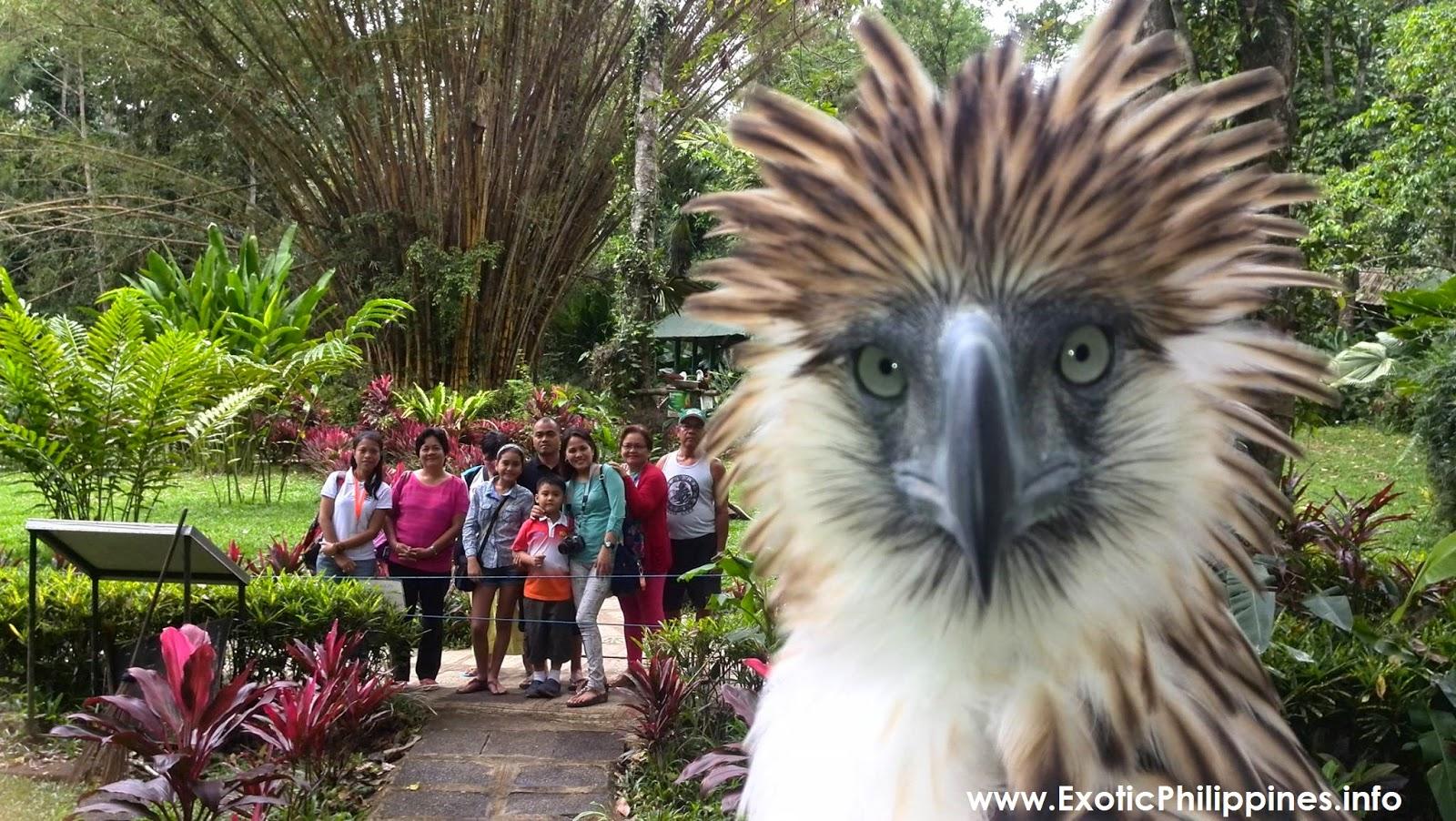 Sur Viajes Águila - Tours