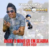 BAIXE O NOVO CD DA BANDA A BRONKKA