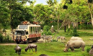 Tempat Wisata di Bali - Taman Safari Indonesia 3 (Bali Safari & Marine Park)