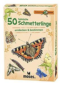 Schmetterlinge bestimmen: