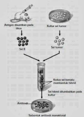 Pengertian Bioteknologi Kesehatan