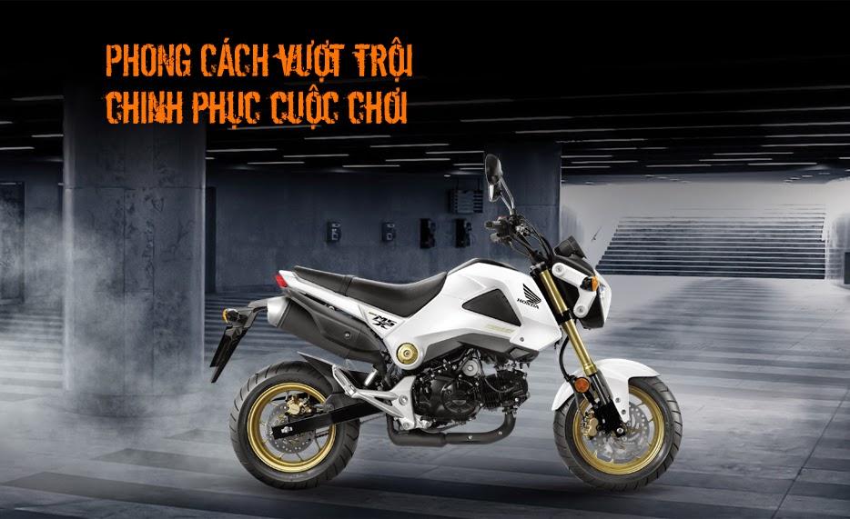 Honda MSX 125 2014 tại Việt Nam