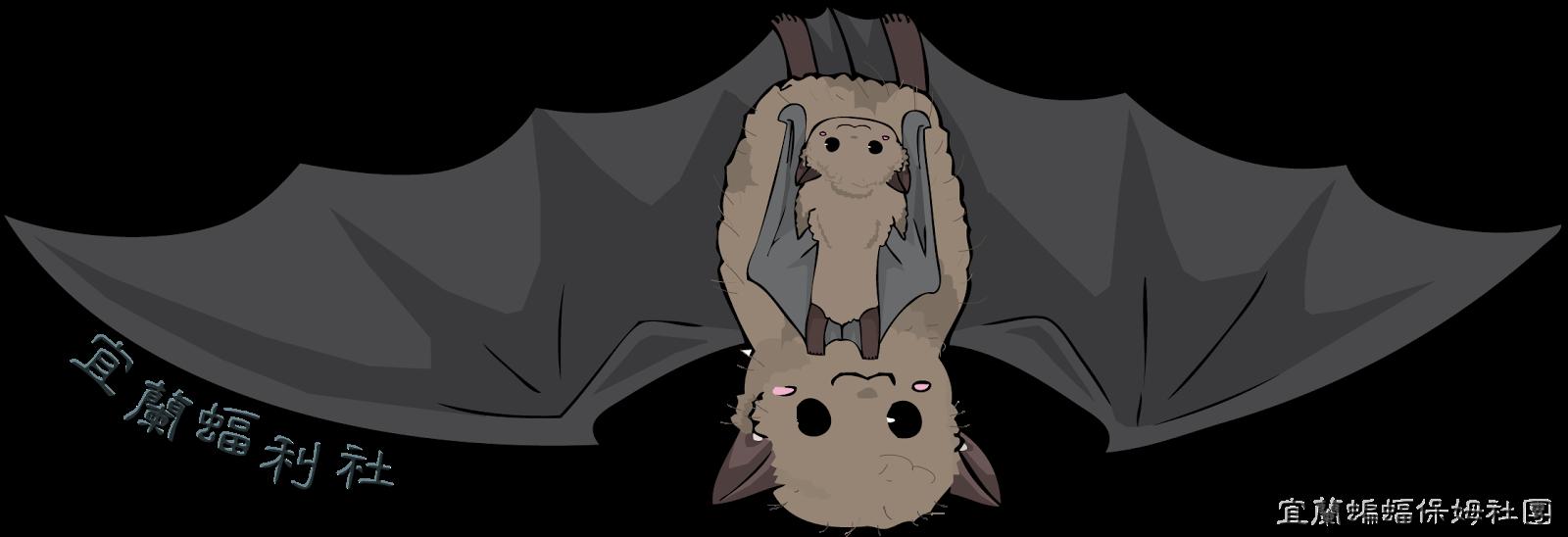 宜蘭蝠利社(蝙蝠保姆社團)