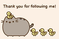Gracias por seguirme!