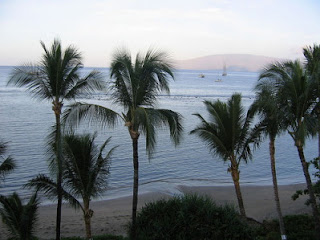 lahaina shores maui