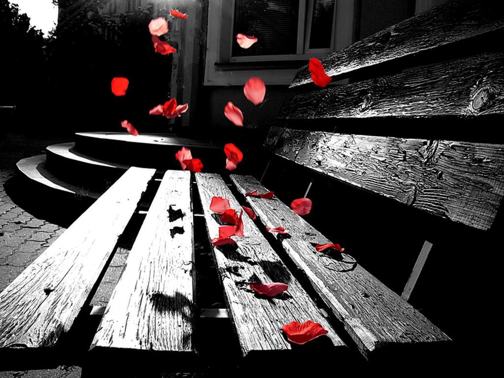http://1.bp.blogspot.com/-FlM_HcqAcR8/ToSEmcBNN6I/AAAAAAAAAgk/ysrklfpfYio/s1600/So_Romantic_Wallpaper.jpg