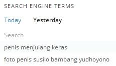 bukan thesis SBY
