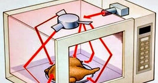 Cocinar en el microondas es malo para la salud - Cocinar en el microondas ...