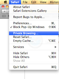private browsing in safari browser
