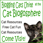 Cat Blogosphere