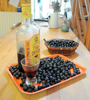 french village diaries recipes sloe gin
