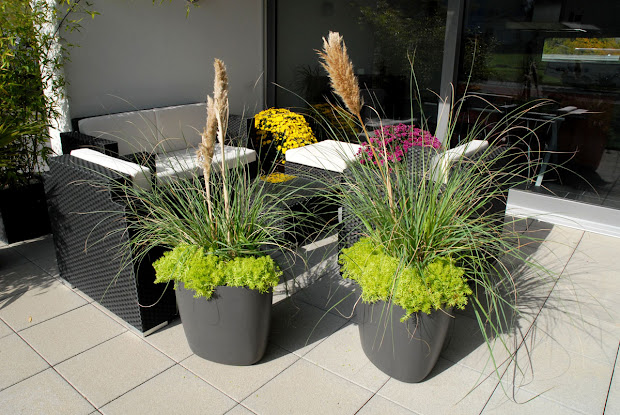 patio & garden planter pots modern