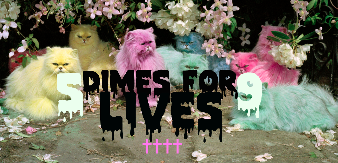Five Dimes For Nine Lives