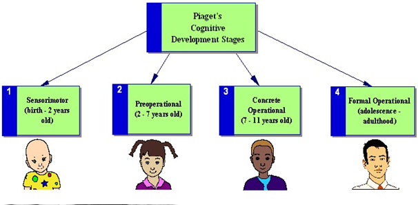 lets now take a closer look at the discrete stages of cognitive development piaget describes