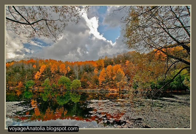 Autumn at Lake Karagöl, Karagölde Sonbahar