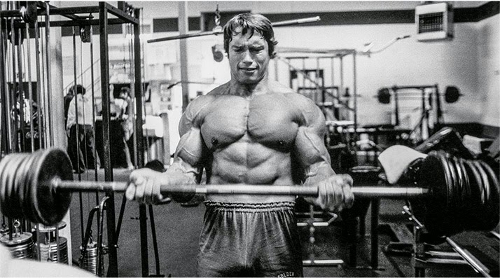 Jayfitnessworkout arnold schwarzenegger blueprint trainer mass i wanted to let the biceps know that they didnt know what was coming that they werent going to get used to my training method and that i had all kinds malvernweather Gallery