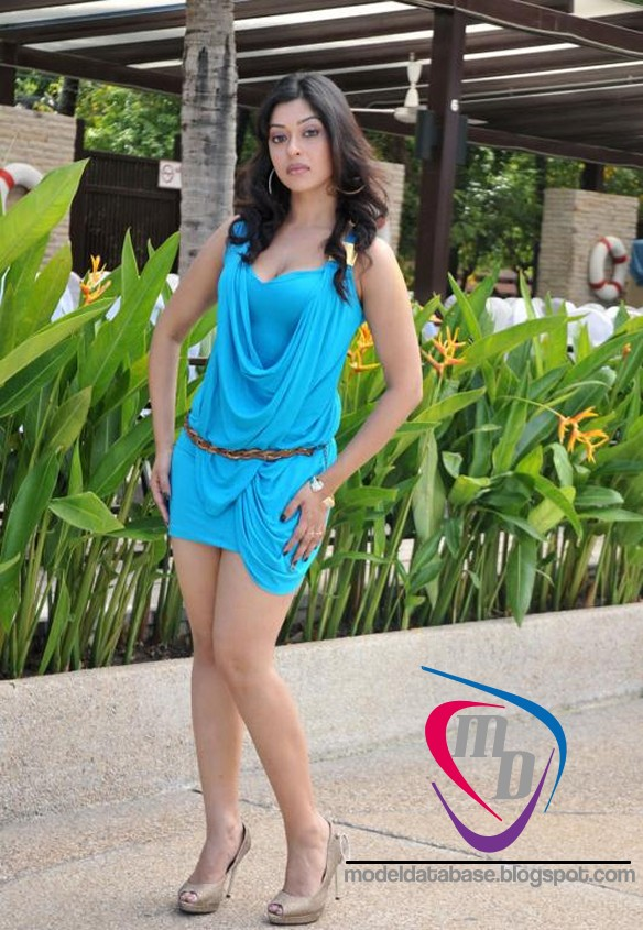 Tamil actress Payal ghosh creamy white thigh show in a tight blue ...