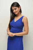 Nikitha Narayan glam pics in blue-thumbnail-12