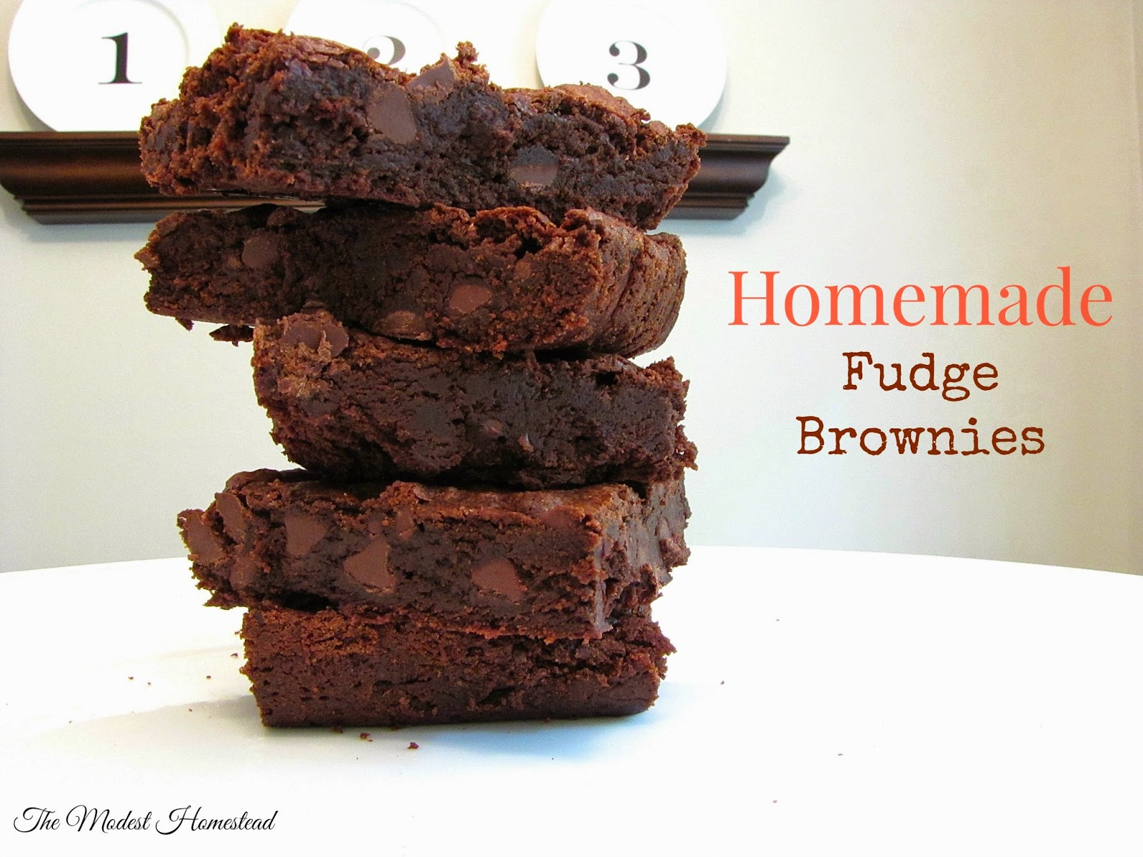 The Modest Homestead: The best homemade fudge brownies