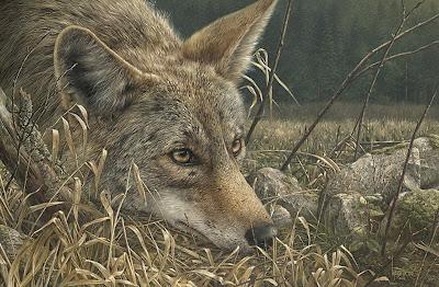 paisajes-canadienses-con-animales