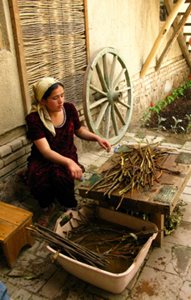 Preparing mulberry branches for papermaking