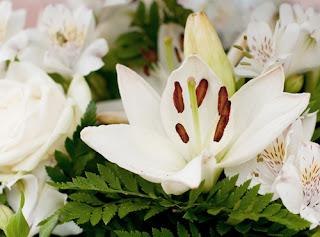 Coronas de flores por funeraria en Valencia