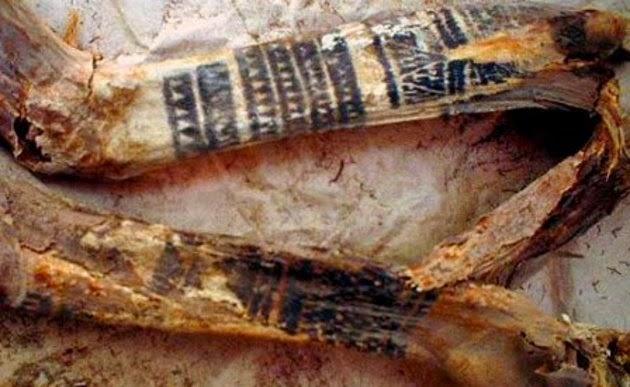 momia, museo, tatuajes, momia tatuada, prehistoria, egipto, momia egipcia, mummy, antiguo, momificacion