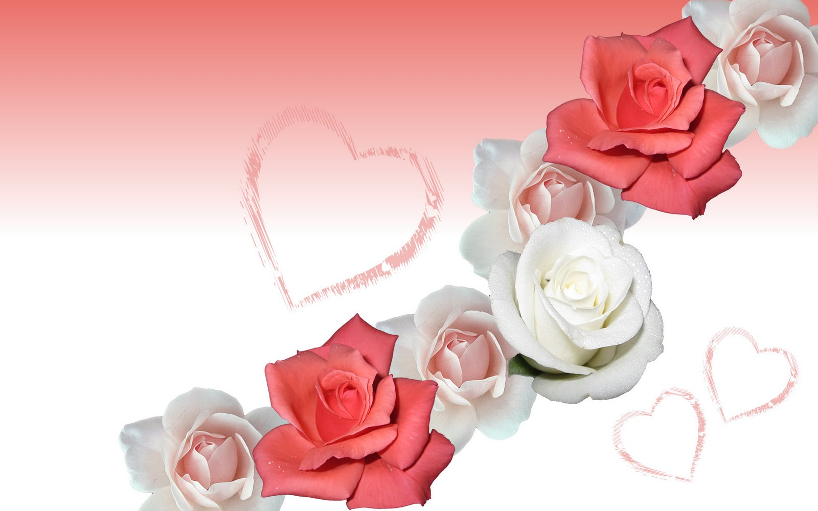 heart and roses background - photo #17