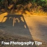 Free Photography Tips