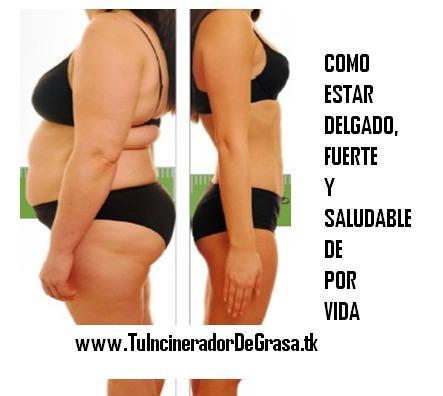 Dieta debe como comer adecuadamente para bajar de peso mejor