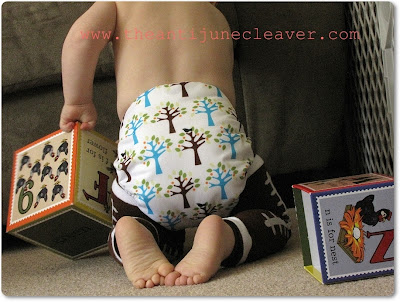 Thirsties Duo Diaper Review