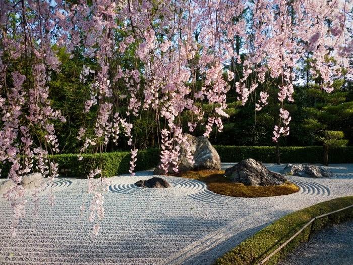 El mapa de las palabras memorias de una geisha kioto for Jardines zen valladolid