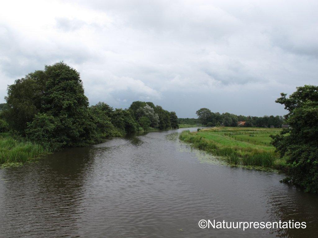 Natuur en reisblog natuurpresentaties: juli 2011