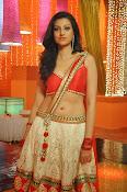 Hamsha Nandini Hot Stills-thumbnail-16