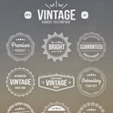 vintage vector set of vintage badges