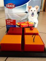 Strategiespiel für Hunde, Intelligenzspielzeug