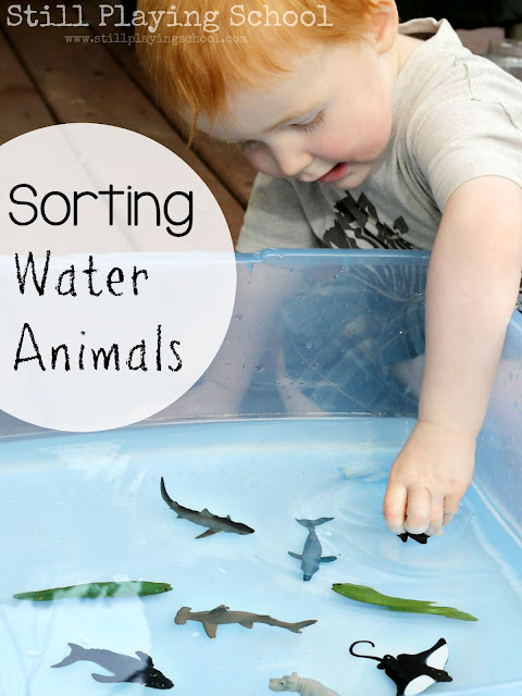 Sorting water and land animals with water play for kids