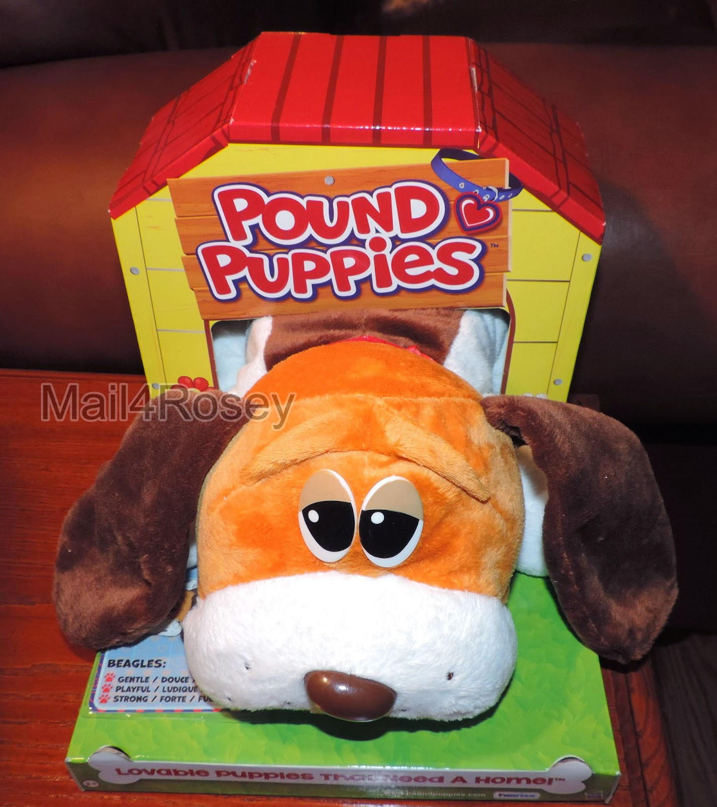 Mail4Rosey Win a Pound Puppy