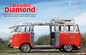 Double Diamond Twin Door