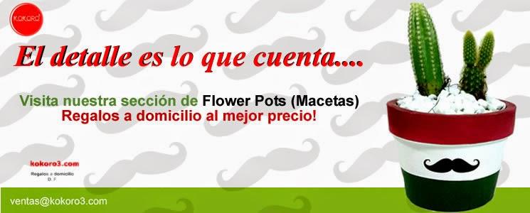 http://www.kokoro3.com/categoria_FLOWER-POTS--Macetitas-,54.htm