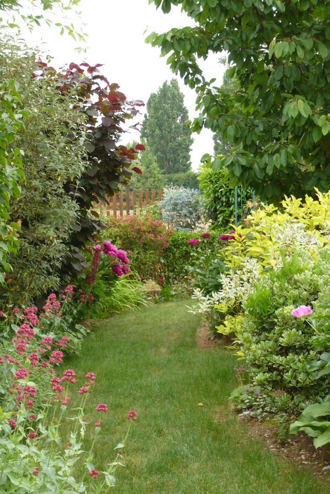 Le jardin de pacalou a quand la pluie - Quand planter la lavande ...