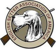 ENGLISH SETTER ASSOCIATION of AMERICA