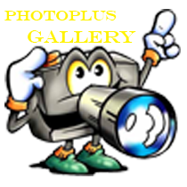 PHOTOPLUS + GALLERY