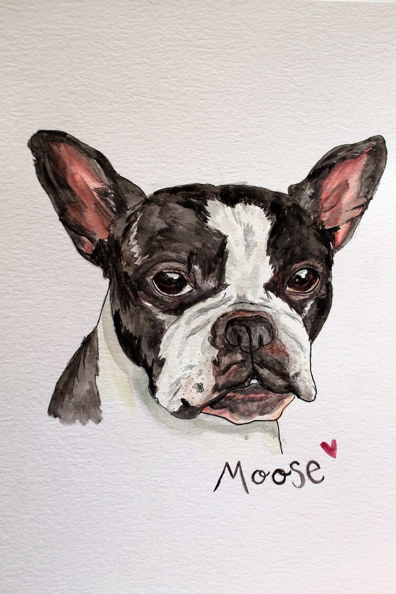 Watercolored Bulldog Painting by Katie Smith