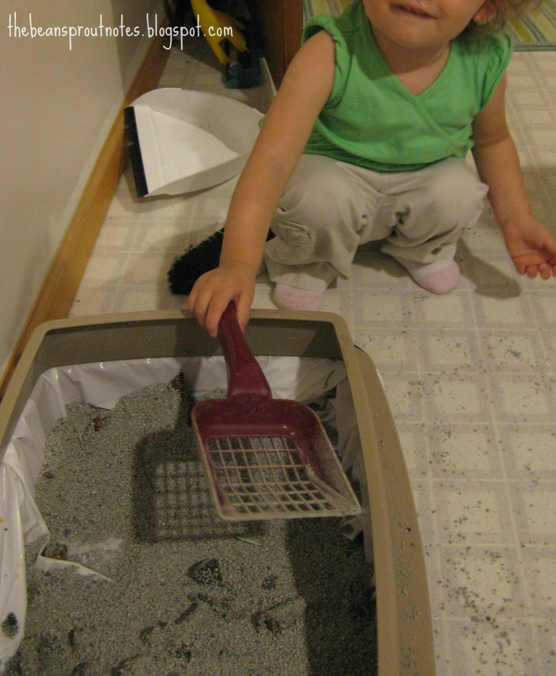 The Bean Sprout Notes: Baby Proofing the Kitty Litter Box