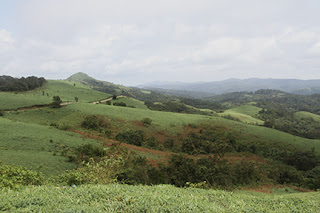 Beautiful view of mountains and hills of western ghats at Mandalpatti by Manju Panchal