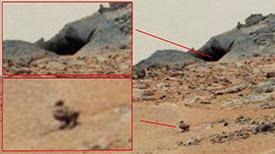 Réel canard dans la grotte pour dormir, manger, boire Sur Mars, la NASA Curiosity, Août 2013
