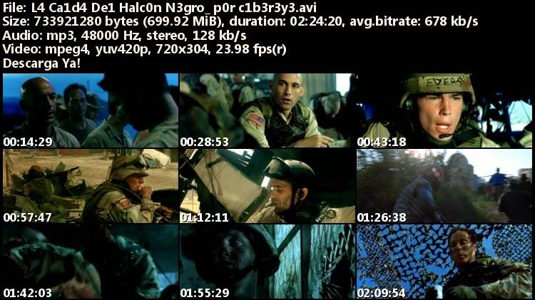 L4 Ca1d4 De1 Halc0n N3gro_ p0r c1b3r3y3_s