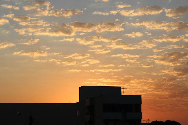 Pôr-do-sol do cerrado-pôr-do-sol do Goiânia